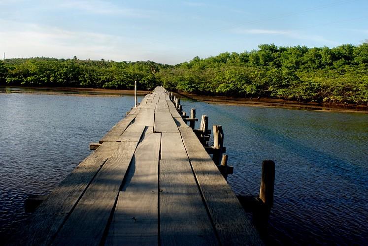 ponte.jpg